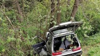 82-letni kierowca nie żyje. Jego fiat uderzył w  drzewo