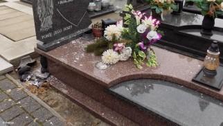 Cmentarny chuligan w rękach policji – FOTO