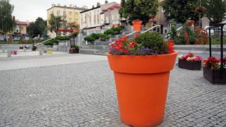 Kętyw dziesiątce najpiękniej ukwieconych miast w Polsce