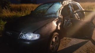 PRZECISZÓW.  Jazdę samochodem 19-latek skończył na drzewie