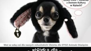 Przyjdź w Dzień Dziecka do Domu Kultury i pomóż zwierzakom!