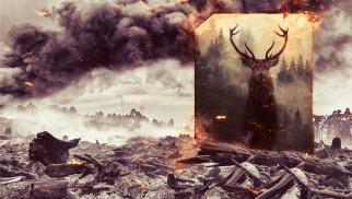 Stop pożarom traw i lasów!