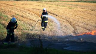 Strażacy gasili pożary ścierniska, traw i nieużytków. ZDJĘCIA!