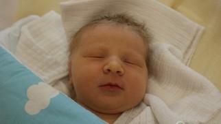 Witamy Zosię, Milenkę, Liwię, Gabriela i Bruna – FOTO