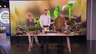Wysiej warzywa już dziś i ciesz się nimi na wiosnę – FILM