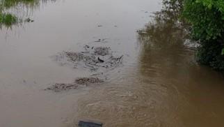 Wzrost poziomu wody na rzece Wisła - InfoBrzeszcze.pl