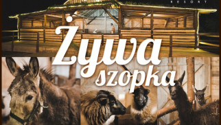 Żywa szopka w Osieku – FOTO
