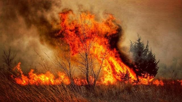 127 pożarów traw od początku roku w powiecie oświęcimskim