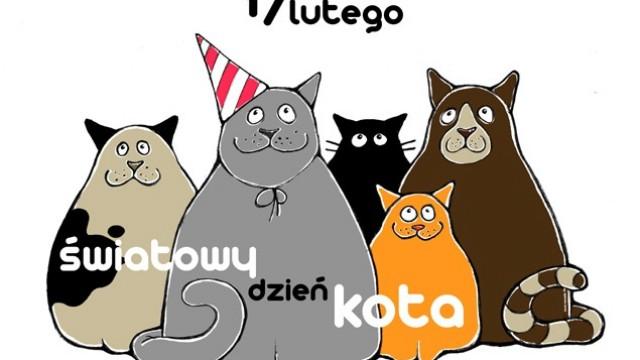 17 lutego - Światowy Dzień Kota - InfoBrzeszcze.pl