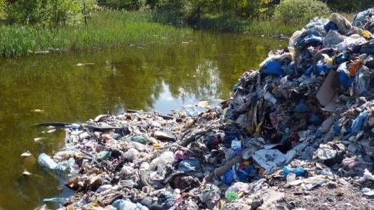 20 ton śmieci ze Śląska trafiło do stawu – FOTO