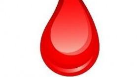 Akcja poboru krwi w Nowej Wsi