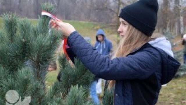 Akcja sadzenia drzewek dla uczczenia 100. rocznicy odzyskania przez Polskę niepodległości