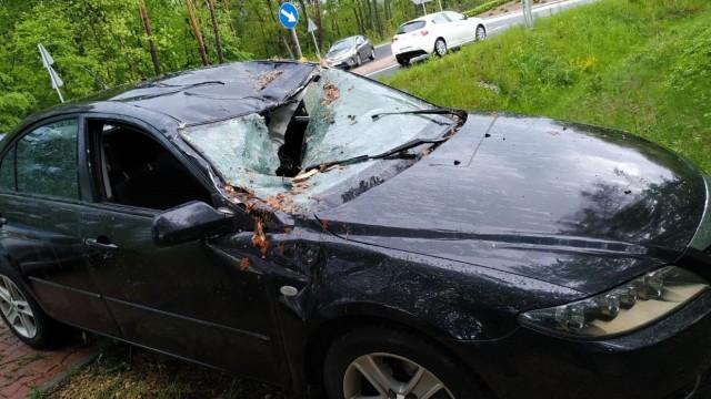 BOBREK. Na Rondzie drzewo spadło na samochód