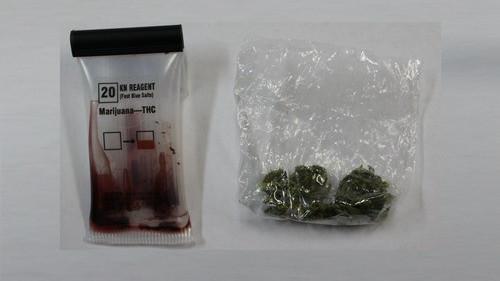 CHEŁMEK. Dwóch nastolatków z narkotykami