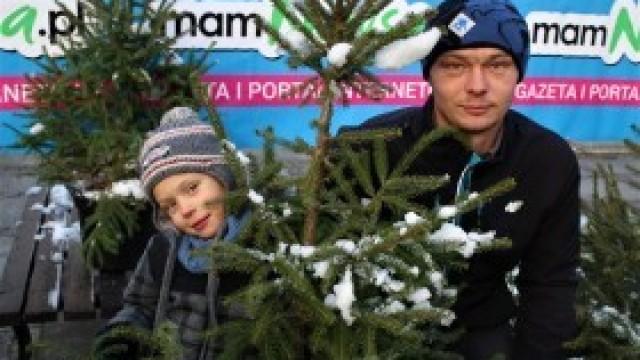 Choinki od mamNewsa.pl rozdane! Zobacz zdjęcia!