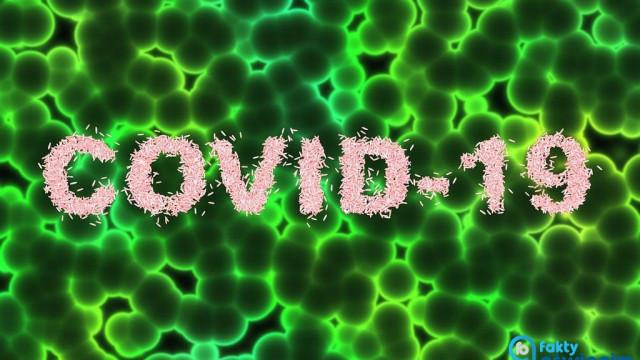 COVID-19. Pierwsza doba bez stwierdzonych zakażeń