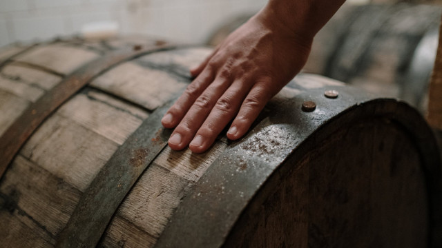 Drożdże piwowarskie – co trzeba o nich wiedzieć, gdy warzymy piwo?
