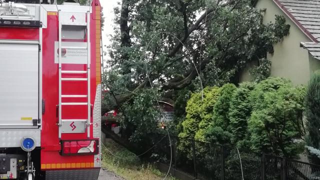 Drzewo przewróciło się na budynek i zerwało linie energetyczne. ZDJĘCIA!