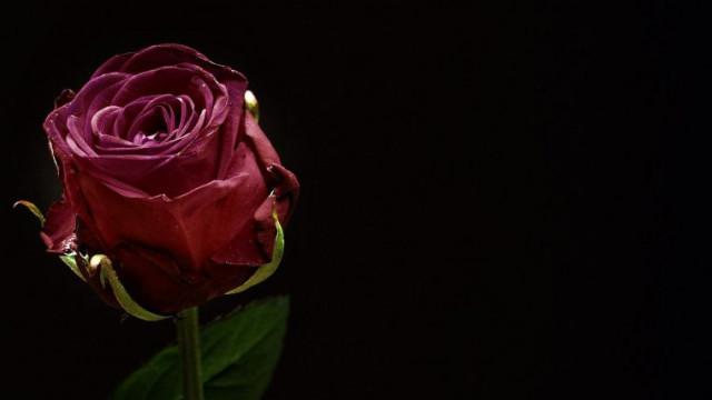Dzień Pamięci Ofiar Zbrodni Katyńskiej. Hołd ofiarom sowieckiego barnarzyństwa