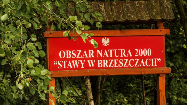 Dzikie wysypisko śmieci - InfoBrzeszcze.pl