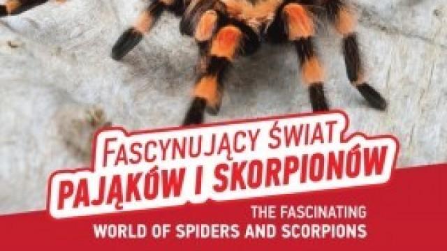 """""""Fascynujący świat pająków i skorpionów"""" - wystawa żywych okazów Domu Kultury w Kętach"""