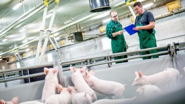 Gobarto zaprasza rolników do współpracy