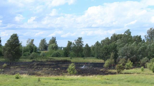 Groźny pożar w Chełmku. W akcje zaangażowano samolot gaśniczy. ZDJĘCIA, FILM !