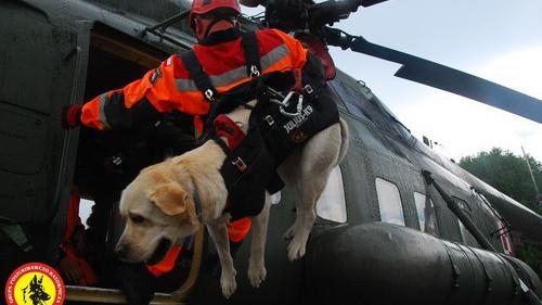 KĘTY. Razem można więcej i skuteczniej. Połączone siły psów,  ratowników i helikopterów