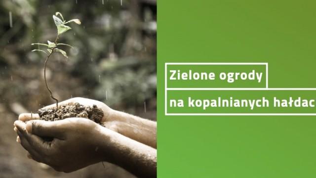 LIBIĄŻ. Zielone ogrody na kopalnianych hałdach