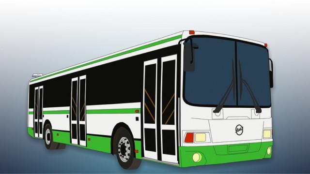 Linia autobusowa Stawy Grojeckie - Włosienica