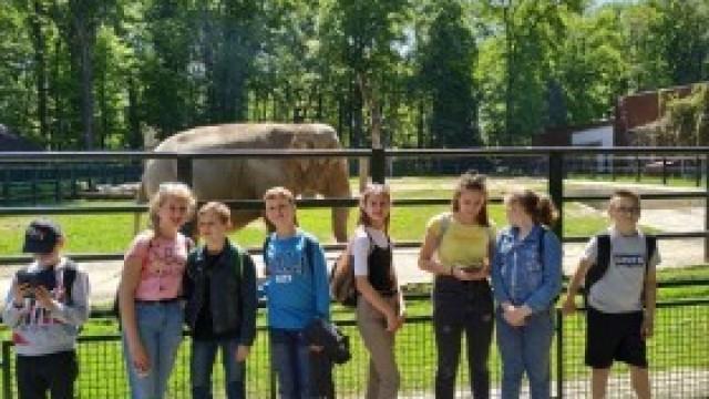 Młodzi żacy z Gminy Kęty z wizytą w krakowskim ZOO