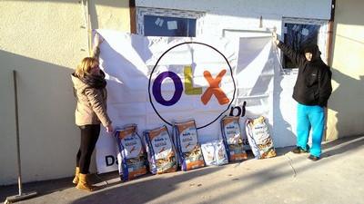 OŚWIĘCIM. 17 ton karmy dla zwierząt ze schronisk