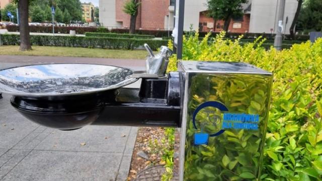 OŚWIĘCIM. Darmowe źródełka wody w mieście