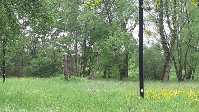 Oświęcim. Galeria bajkowych postaci powstaje na Kamieńcu i bulwarach