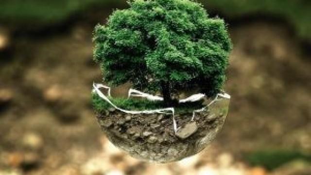 Oświęcim.  Małopolsce możesz starać się o ulgi w opłatach środowiskowych ŚRODOWISKO01 kwietnia 2020