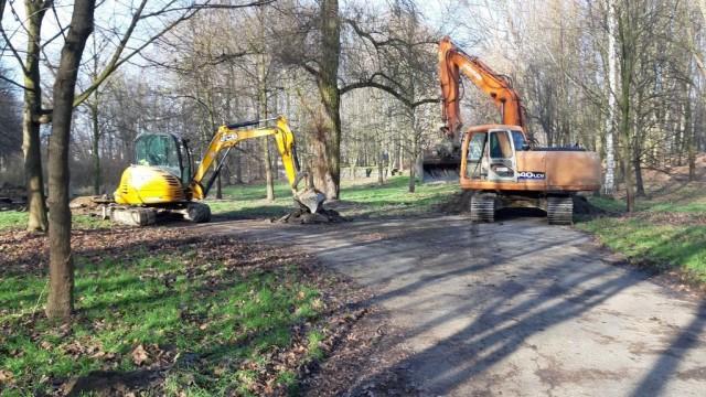 Oświęcim. Zakończyło się porządkowanie drzewostanu w parku Pokoju. Teraz trwa wycinka drzew pod budowę gazociągu, którego inwestorem jest spółka Gaz-System