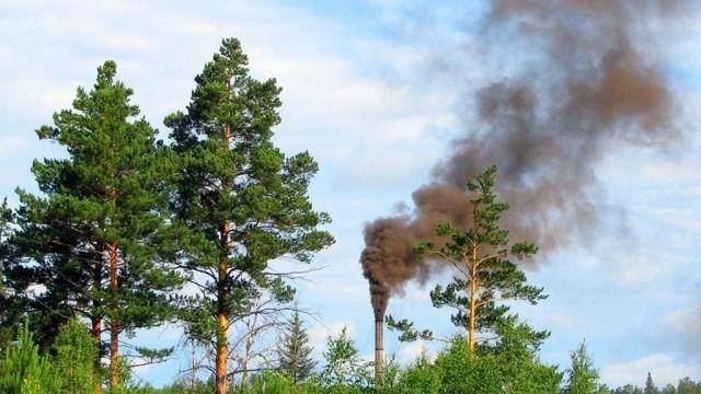 Oświęcimianie chcą zakazu dla palenia węglem i drewnem