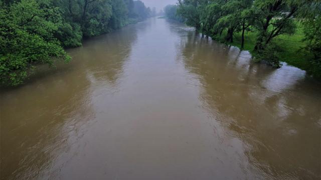 Po Intensywnych opadach deszczu, podnosi się poziom rzek