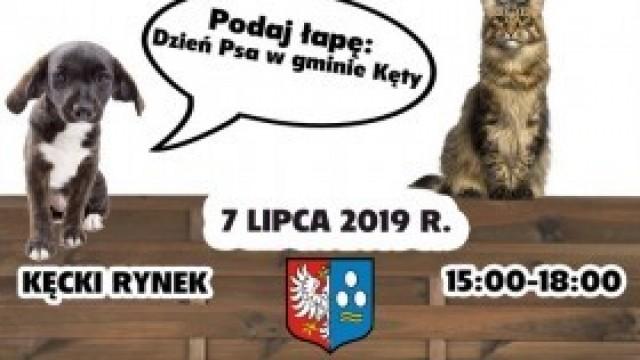 Podaj łapę! Dzień Psa w gminie Kęty już w najbliższą niedzielę!