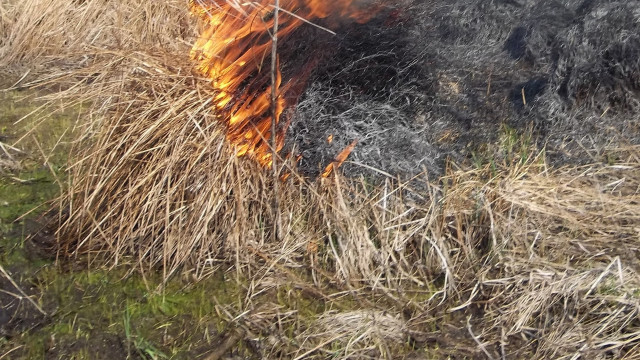Podpalił łąkę i nie zdążył uciec. Mężczyzna trafił pod opiekę Ratowników Medycznych