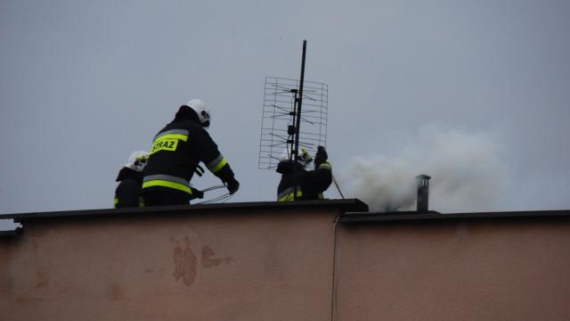Pożar sadz we Włosienicy. FOTO, FILM!