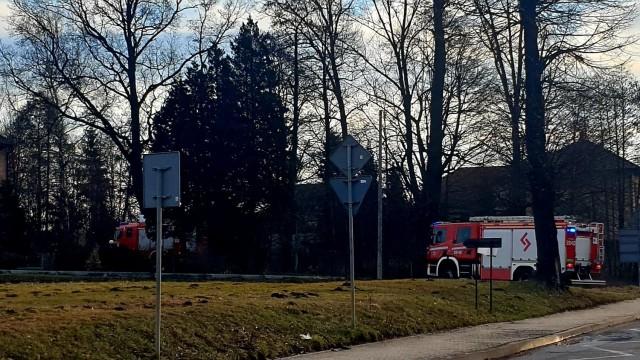Pożar szałasu w jawiszowickim zagajniku- strażacy ujawnili zwłoki mężczyzny -FOTO- InfoBrzeszcze.pl