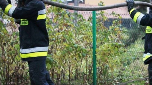 Pożar zabudowań. Siedem sekcji straży w akcji – FOTO