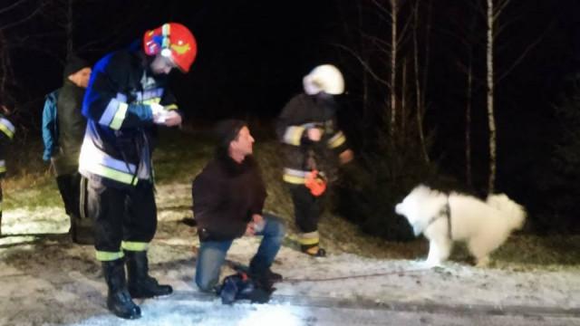Psy dryfowały na krze lodowej w Bielanach. FOTO!