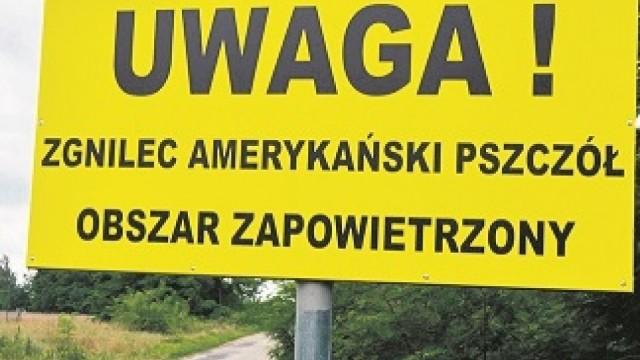 """""""Uwaga! Zgnilec amerykański pszczół – Obszar zapowietrzony"""" - InfoBrzeszcze.pl"""