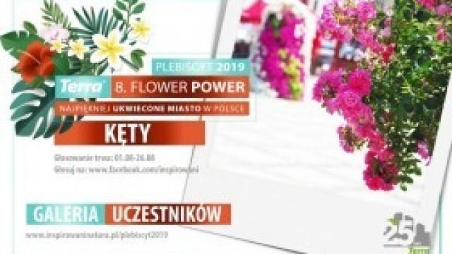 Ruszyło głosowanie w plebiscycie Terra Flower Power! Oddaj głos na Kęty!
