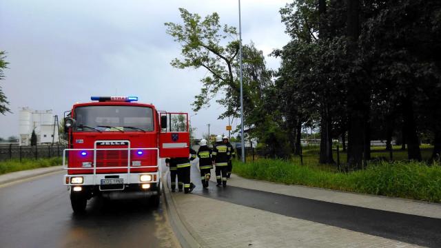 Silny wiatr w powiecie wyrządził wiele szkód. W Zatorze drzewo spadło na samochód. ZDJĘCIA !