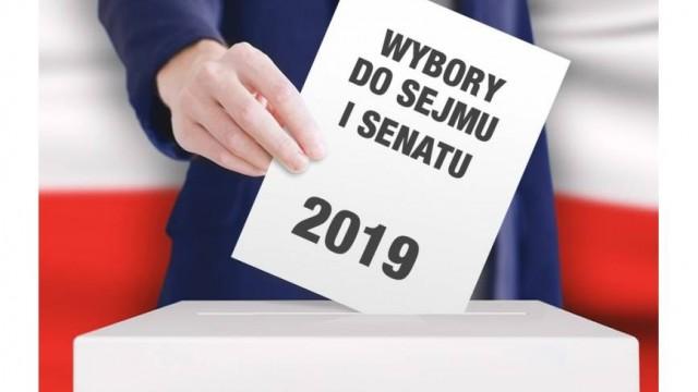 Sondażowe wyniki wyborów - InfoBrzeszcze.pl