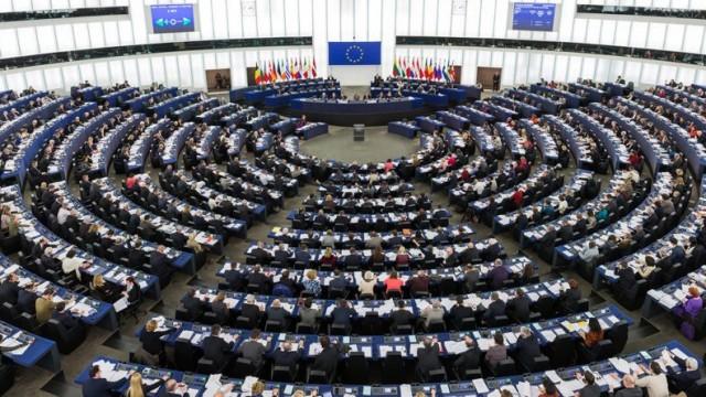Sprawdź, kto będzie reprezentował nasz rejon w europarlamencie - InfoBrzeszcze.pl