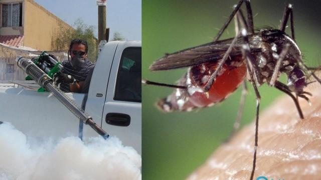 Starcie miasto vs. komary trwa. Kto wygra mecz?